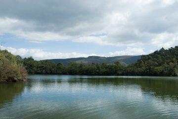 Lagoa do Metro_Paulo Batista (1) (1)